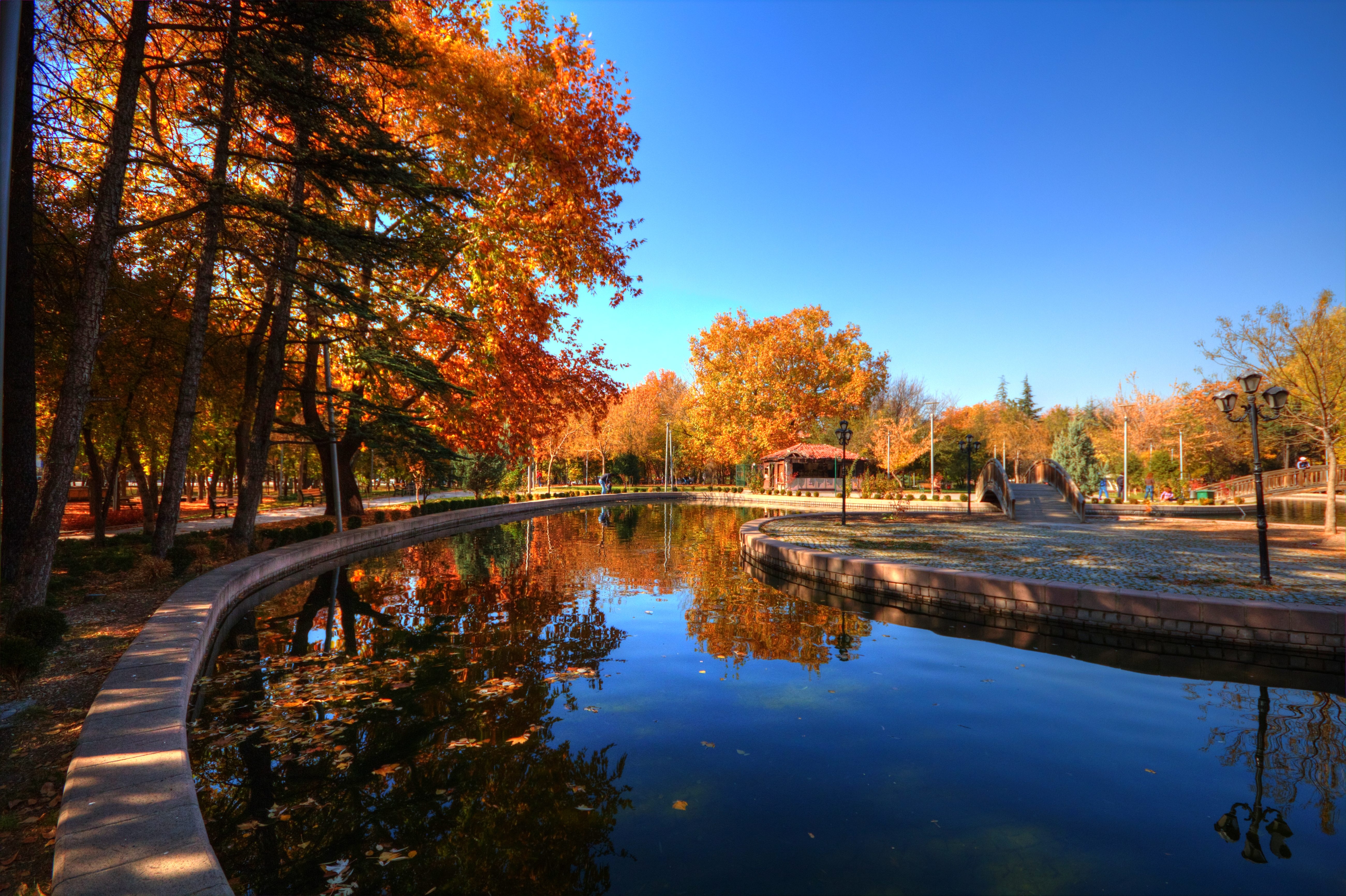 20 Creative Fall Photography Ideas - Autumn at Park - Omer Unlu via Flickr | https://www.roseclearfield.com