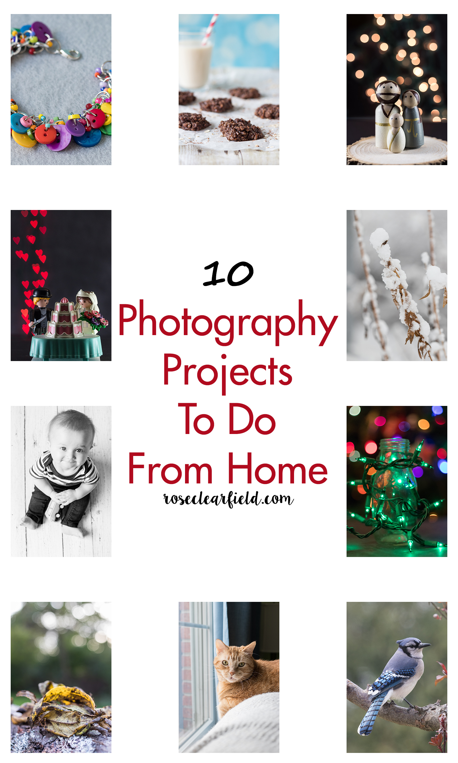 10 Photography Projects To Do From Home | https://www.roseclearfield.com
