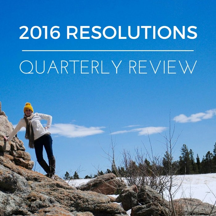 2016 Resolutions - Quarterly Review | Rose Colored Water