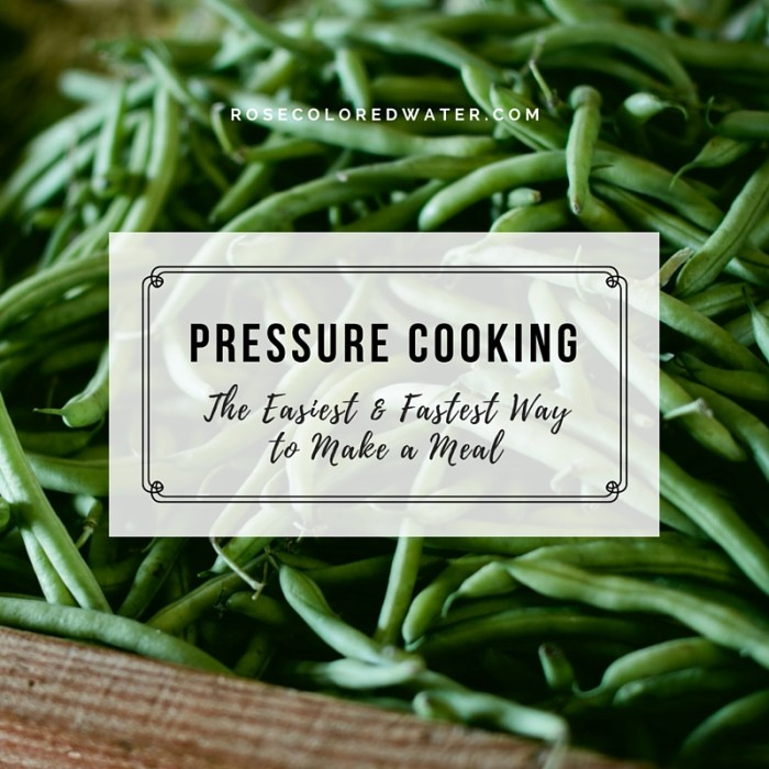 Pressure Cooking is the fastest, easiest way to make a meal for your family. #kitchen #recipes #cooking | Rose Colored Water