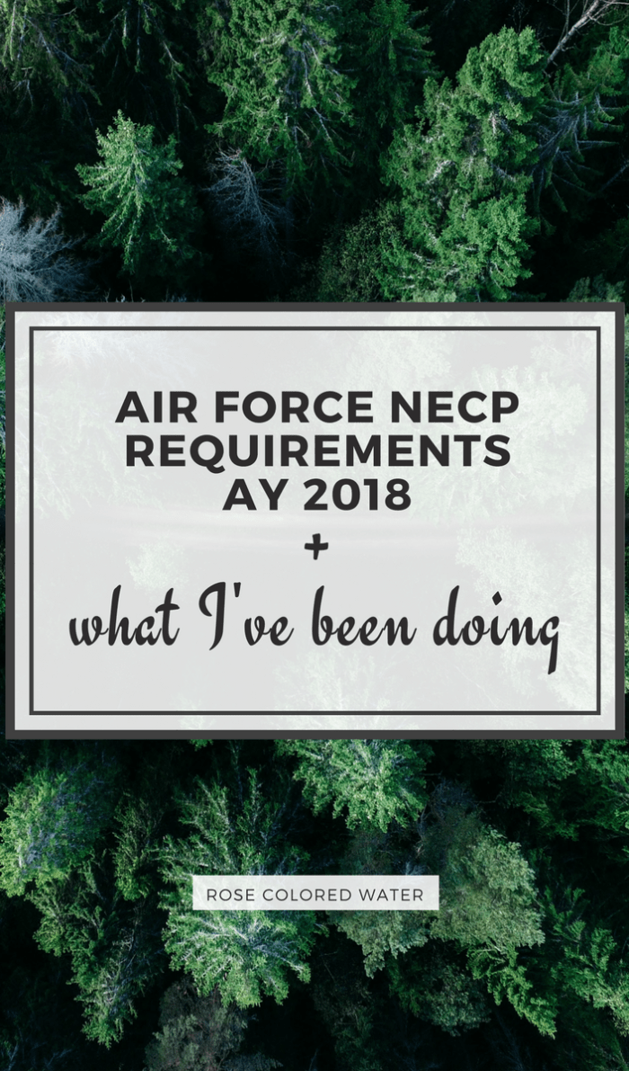 Air Force NECP requirements 2018 | Rose Colored Water