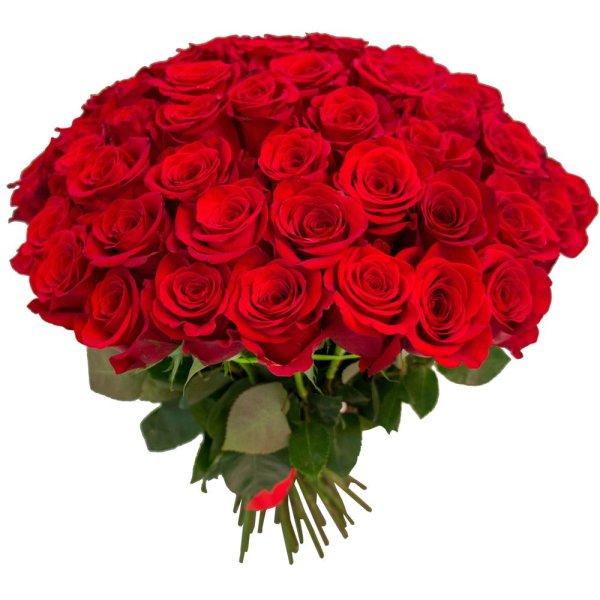 Букет 65 красных роз в Санкт-Петербурге: купить недорого с ...