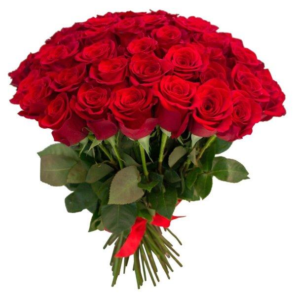 Букет 65 красных роз RoseMarkt в СПб