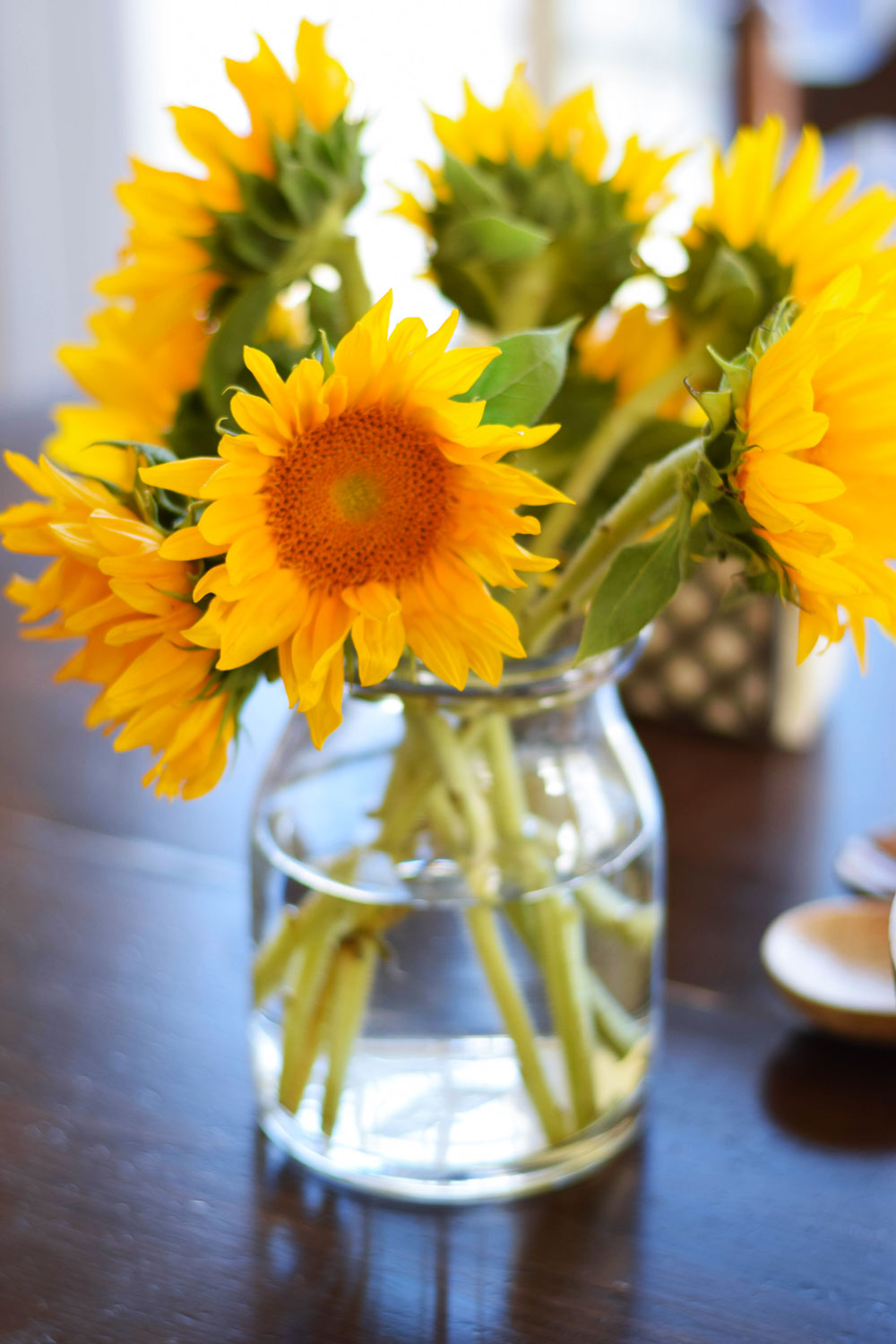 Sunflowers from Sprouts