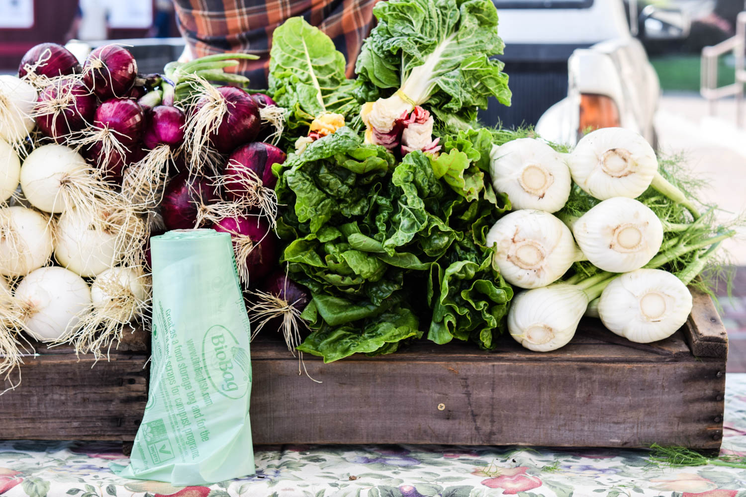 5 things I learned from joining a CSA this summer, Farmer's Market, Vegetables
