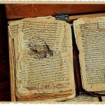 ancient manuscript pages eaten by insects