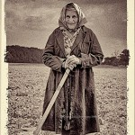 a grandmotherly woman works in a potato field on a collective farm inCzechoslovakia