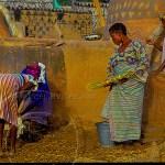Gerounsi women artists prepare to paint a village wall