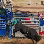 cowboy flying off the b ack of a bucking bull