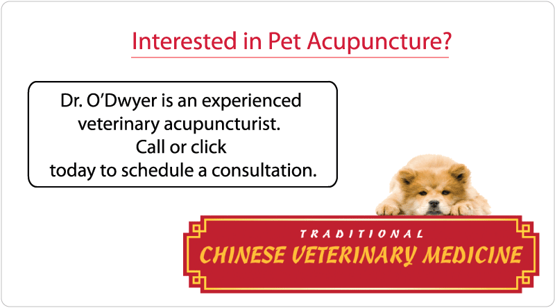 Traditional Chinese Veterinary Medicine - Rosemont
