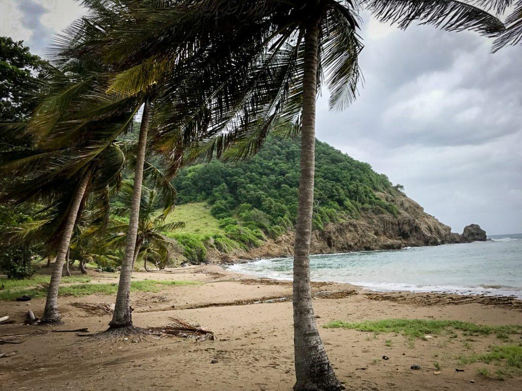 Plage_Saintes_Guadeloupe_Anse_du_Figuier