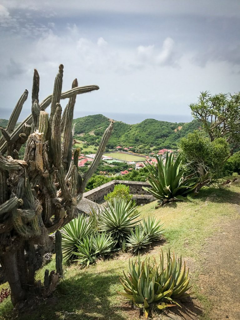 beautoful_Gardens_Fort_Napoleon_Guadeloupe