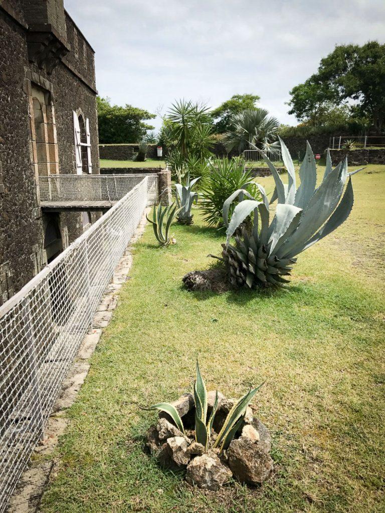 Museum_Garden_Fort_Napoleon_rosesinparis_Saintes