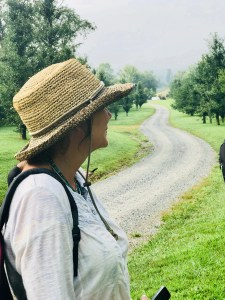 woman looking at a field of Gingko trees at Gaia Herbs