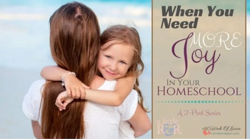 It can be easy to lose our homeschool joy when we drive our kids to boredom or when we stop having fun with our children. Here is the second part of a 2-part series. When You Need More Joy In Your Homeschool.