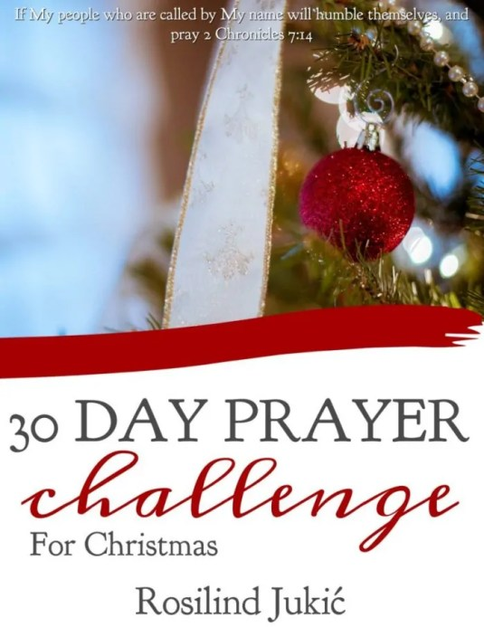 """So often we are distracted with the lights and decorations, Christmas parties and pageants, buying presents, making lists, making cookies, planning a big dinner. And all of the preparation to celebrate Jesus can make us crazy! Something like Martha in the Bible. She was so busy preparing for Jesus, she never enjoyed Jesus. And this is the danger we often face during this season. We want to create the """"perfect Christmas""""(whatever that is) We want to make sure we buy the perfect gifts Throw the perfect party Make the perfect cookies Everything has to be extra-special....but where is our heart? Is it distracted? We can be Mary and still do all the cooking and decorating, planning and buying of presents, as long as our heart remains at Jesus' feet. Learning from Him Enjoying His presence Dwelling in His peace That is why this year I created a 30 Day Prayer Challenge for Christmas. This Prayer Challenge takes you through the entire Christmas story, sometimes glancing back at Old Testament prophesies to offer some broader perspective. I truly enjoyed creating this one and I can't wait to go back during December to revisit these wonderful verses and remind myself how God spoke through those prophets to tell about the coming of His Son....and wonder if they truly understood the significance of their words. I hope you'll join me in sitting at Jesus' feet this month and celebrating Him. Celebrating the fact that God chose to become man That God chose to walk among us That God chose to subject Himself to the limitations and frustrations here on earth That God chose to live a life of stigma, look so average that no one would even give him a second glance, and then die like a criminal. In celebrating Him, we learn from His example of rejecting the temptation to enjoy being liked too much and enjoying luxury too much, but rather keeping His eyes fixed on heaven. Let us choose the better thing this year. Join me in 30 days of praying through the Christmas story!"""