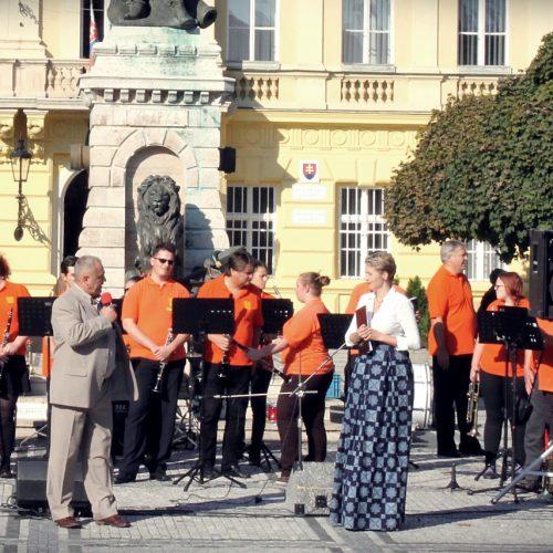 Festival dychoviek 2015 (1)