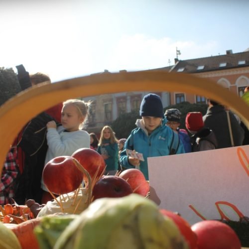 jesenný deň zdravia (119)