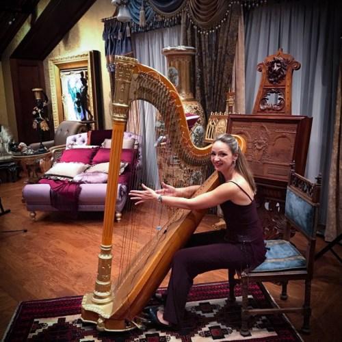 soiree privee milevska harpe musique evenementiel cocktail
