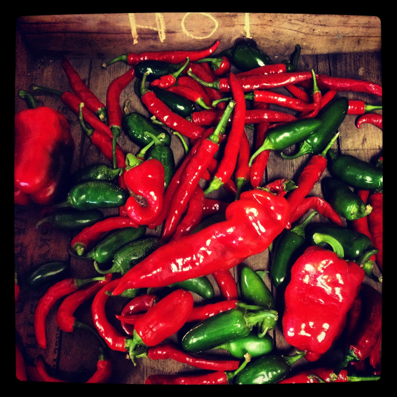 Hot chili peppers at Full and By Farm (Source: Rosslyn Redux)