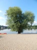 Der Donau-Strand