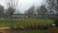 """Der Spielplatz """"Weidenversteck"""""""