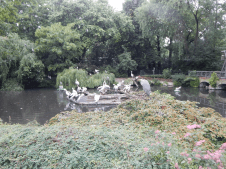 Zoo Berlin - Pelikane