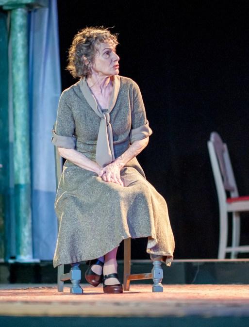 Tamar Cohn as Amanda Wingfield