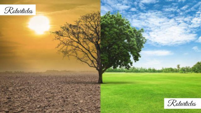 Environmental Issues In Pakistan and Solutions by Warda Malik