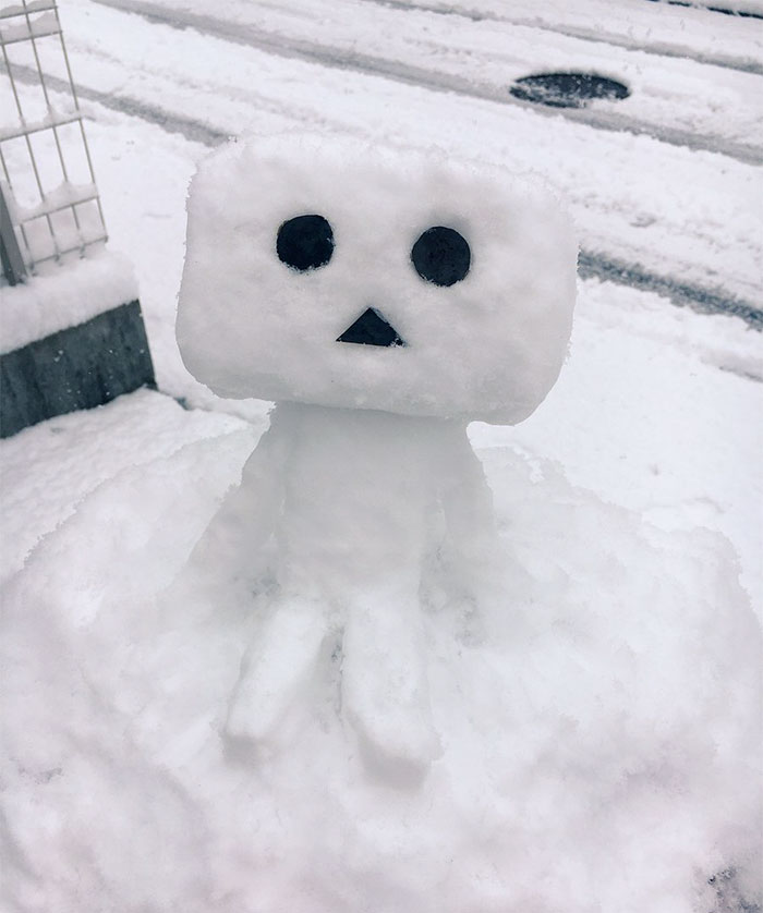 Veja o que acontece quando neva no Japão