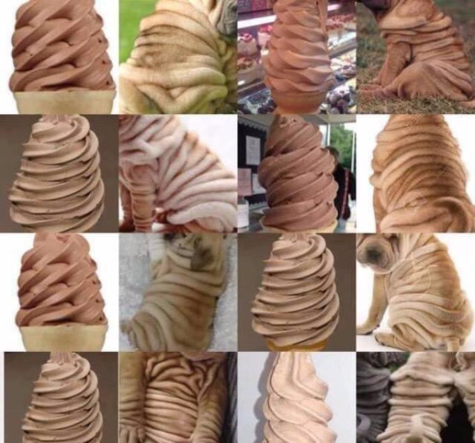 Doguinho ou sorvete???