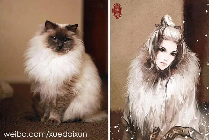 versão humana de gatos e cachorros