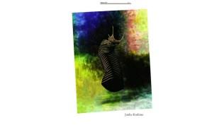 pagina 2 Chiers d'Art- monografia Junko Koshino