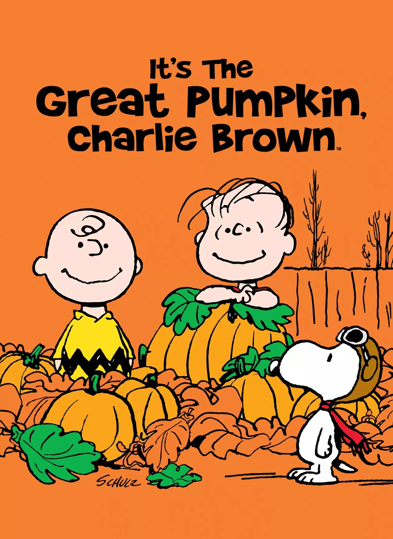 Review It S The Great Pumpkin Charlie Brown