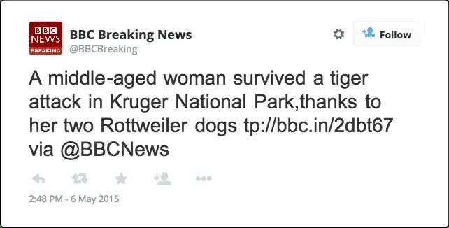 Rottweiler saves a woman