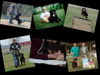 collage2.jpg.opt738x553o0,0s738x553.jpg