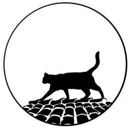 Gato sobre tejado