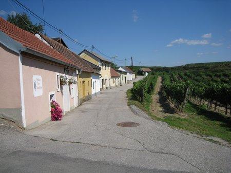 Langenlois Kellergasse