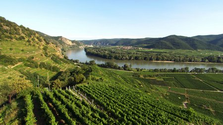 Wachau Donau Panorama