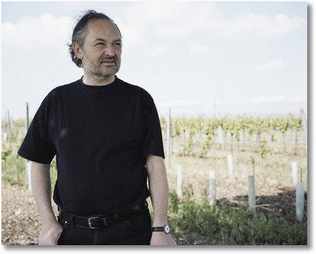 Wein Nittnaus Gols Burgenland