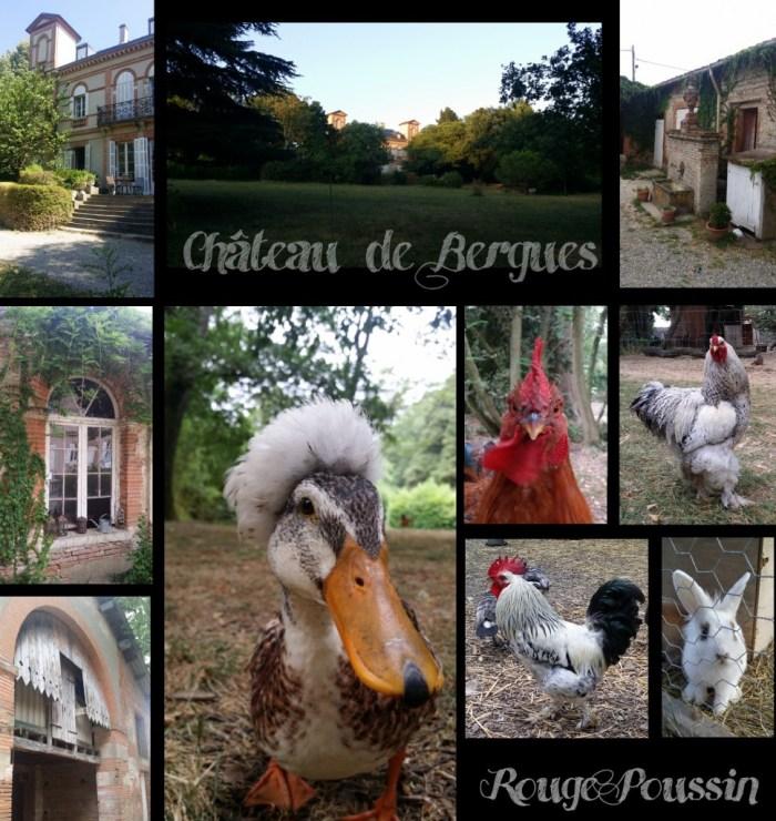 Photos du Château de Bergues