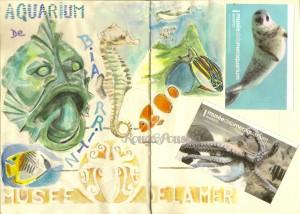 L'aquarium de Biarritz ...
