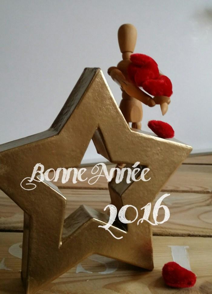 Voeux pour 2016