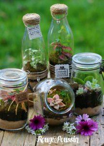 Idée Cadeau : un mini-terrarium pour sa fête ...
