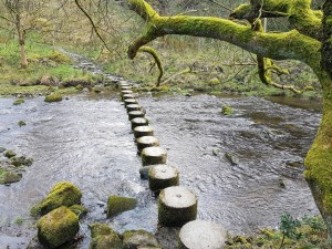 Roughlee Stepping Stones
