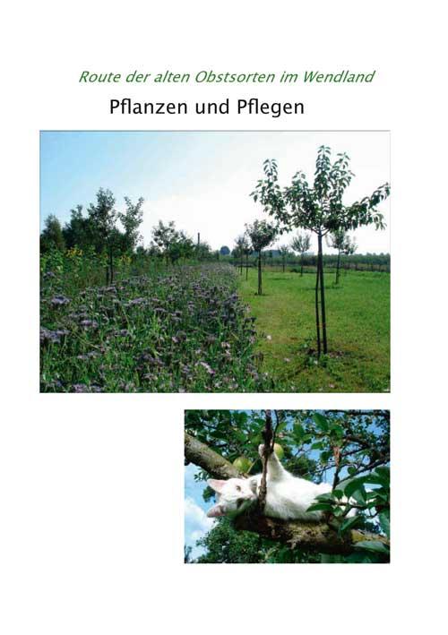 BroPflanzenPlegen