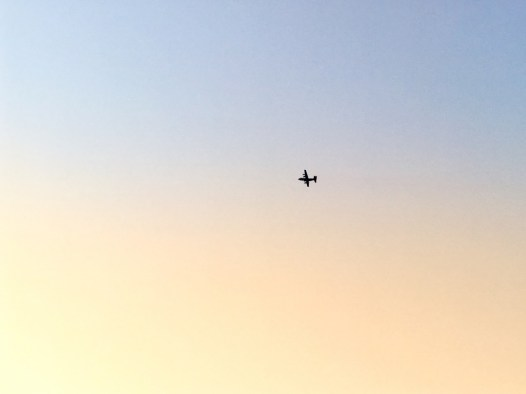 低く飛んでいるのを見つけて撮った飛行機