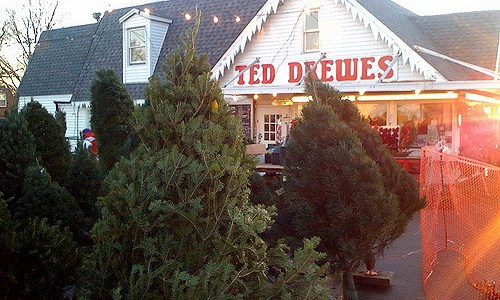 Ted Drewes Frozen Custard's other business