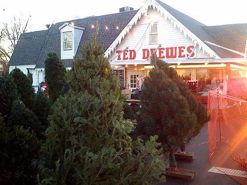Ted Drewes Frozen Custard's other business - Route 66 News