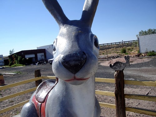 Jack Rabbit Trading Post to host 70th birthday bash on July 6